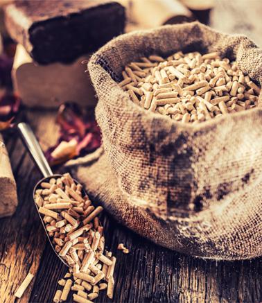 Sacos de biomasa